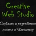 Создание и разработка сайтов в Кокшетау