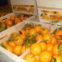 Фрукты и овощи без посредников из Испании, фотография 3