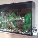 Продам аквариум 65л с рыбками