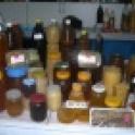 Продам Мед оптом Большенарым гречишный, горно-степное разнотравье
