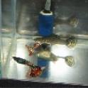 Продам аквариум 500 тнг