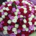 Букет из 151 роз за смешную цену