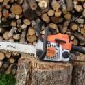 Пилим дрова, валим деревья.