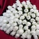 Цветы в Караганде по оптовым ценам