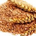 Пшеница, отруби