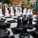 Шахматы парковые (напольные, гигантские, уличные)