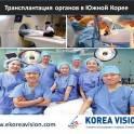 Трансплантация органов в Южной Корее