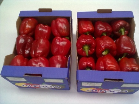 Фрукты и овощи без посредников из Испании, фотография 4