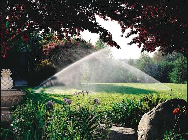 озеленение сада, фотография 4