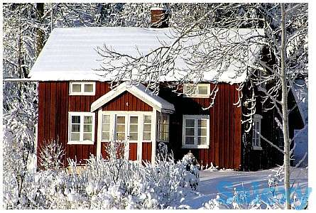Продам дом, Село Трамбовка., фотография 1