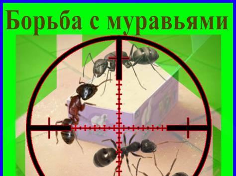 Дезостанция«ВИКТОРИЯ». Уничтожение муравьёв в Алматы и области., фотография 1