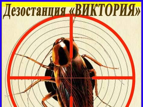 Дезостанция«ВИКТОРИЯ». Уничтожение тараканов в Алматы и области., фотография 1