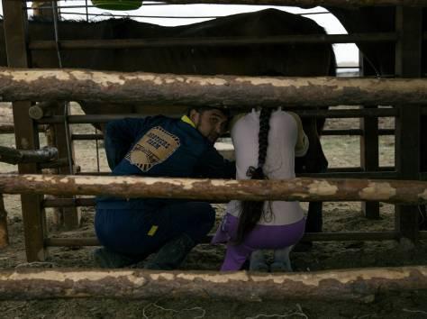 Продам крестьянское хозяйство, фотография 5
