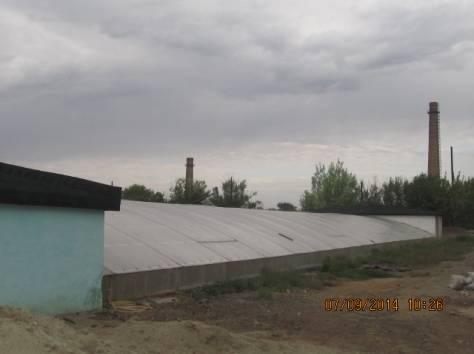 Тепличный комплекс, ВКО, Курчатов, ул. Теплоэнергетиков 8, фотография 3