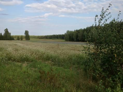 15 га в собственность в Казани Татарстан РФ, фотография 2