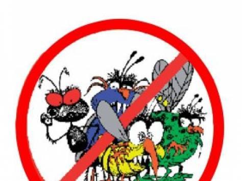 дератизация, дезинфекция, дезинсекция клопы тараканы муравьи и т.д. в Астане (имеется гос. лицензия), фотография 1