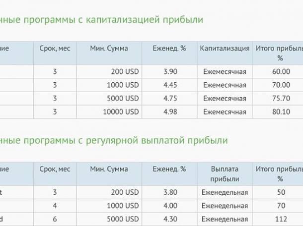 ДЕЛСТОН КАПИТАЛ Выгодный депозит с прибылью от 60 до 80%, фотография 7