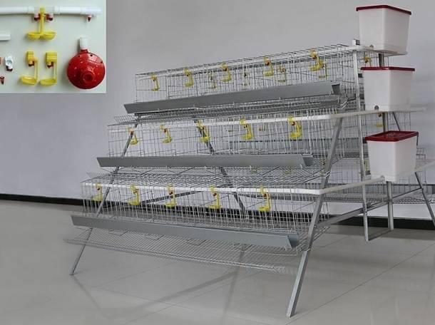 Инкубаторы промышленные, фотография 6