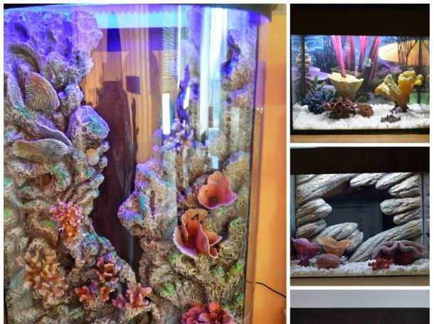 3д декорации любых размеров, в любой цветовой гамме на заказ в аквариум , фотография 4