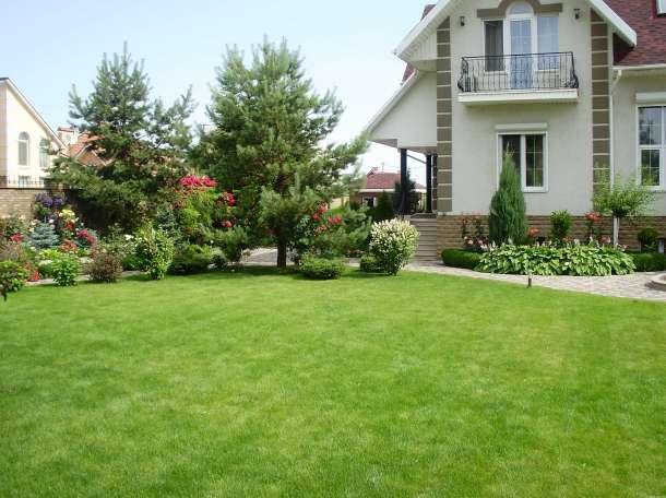 Озеленение двора, фотография 4