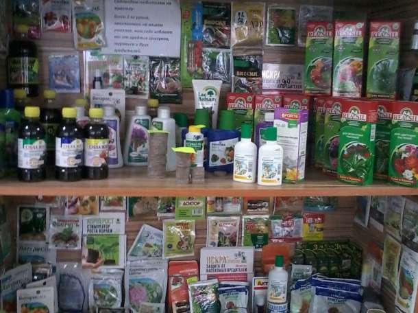 Семена цветов овощей зелени, фотография 6