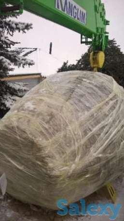пересадка деревьев любой сложности, фотография 4