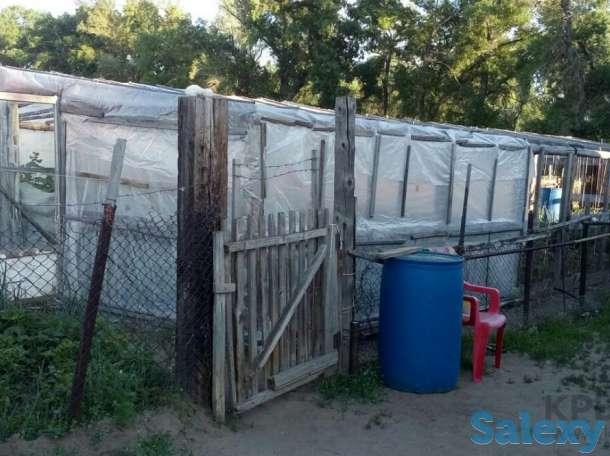 Продам небольшую квартиру (1/4 часть дома) в с. Павлодарское, фотография 2