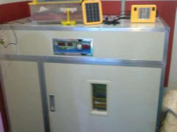 Инкубаторы,грануляторы,перосъемные машины,кормушки,поилки, фотография 5