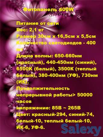 фитолампы, фотография 8