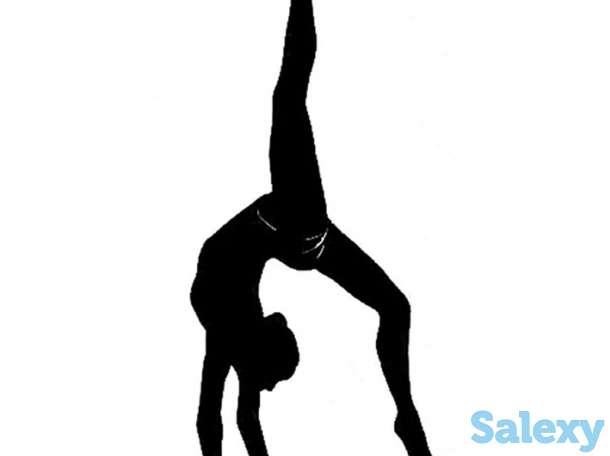 Все для художественной гимнастики, фотография 1