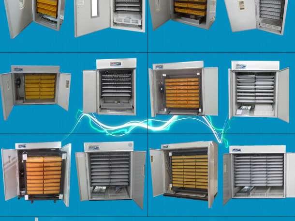Инкубаторы,грануляторы,перосъемные машины,кормушки,поилки, фотография 1