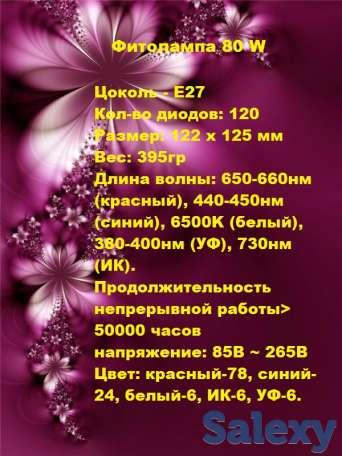 фитолампы, фотография 4