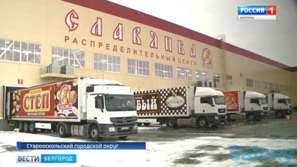 Разнорабочие в  Воронеж и Белгород, фотография 3