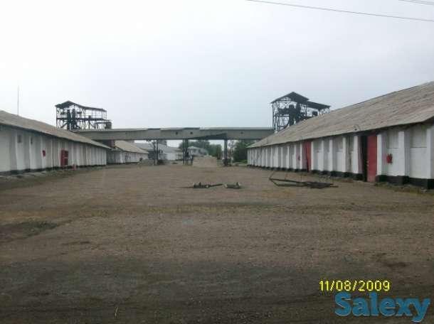 Производственная база, Сатпаева, 44 (бывшая реалбаза), фотография 11