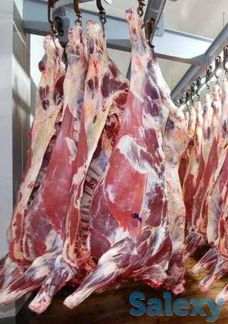 Реализуем мясо и субпродукты, фотография 1