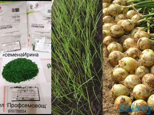 Семена  в Кокшетау, фотография 11