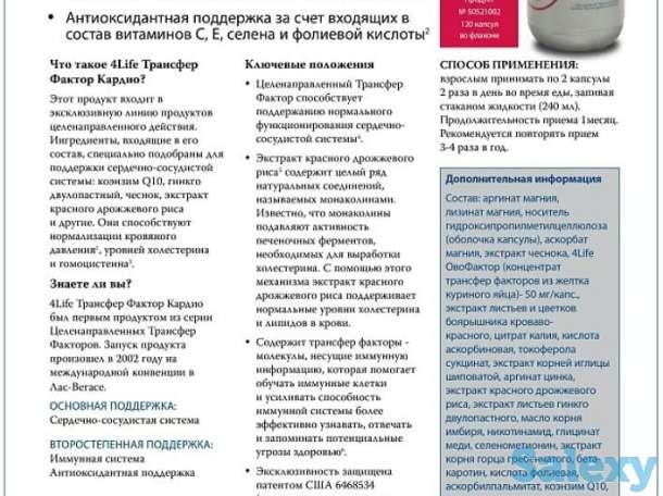 Трансфер Фактор в Павлодаре, фотография 3