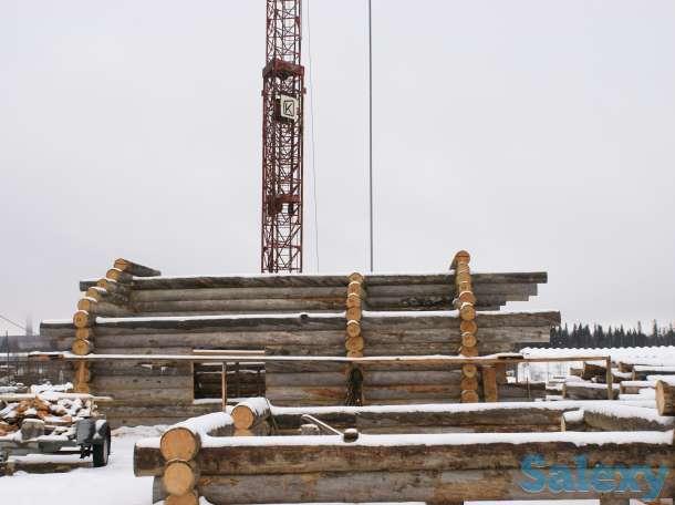 Строительство домов из Карельской сухостойной сосны, фотография 4
