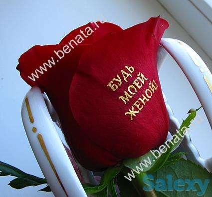 БИО-ФЛОМАСТЕР для нанесения изображений на цветы, фотография 2