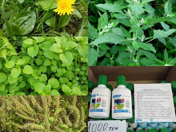 Удобрения, подкормки, средства для борьбы с вредителями и насекомыми, фотография 4
